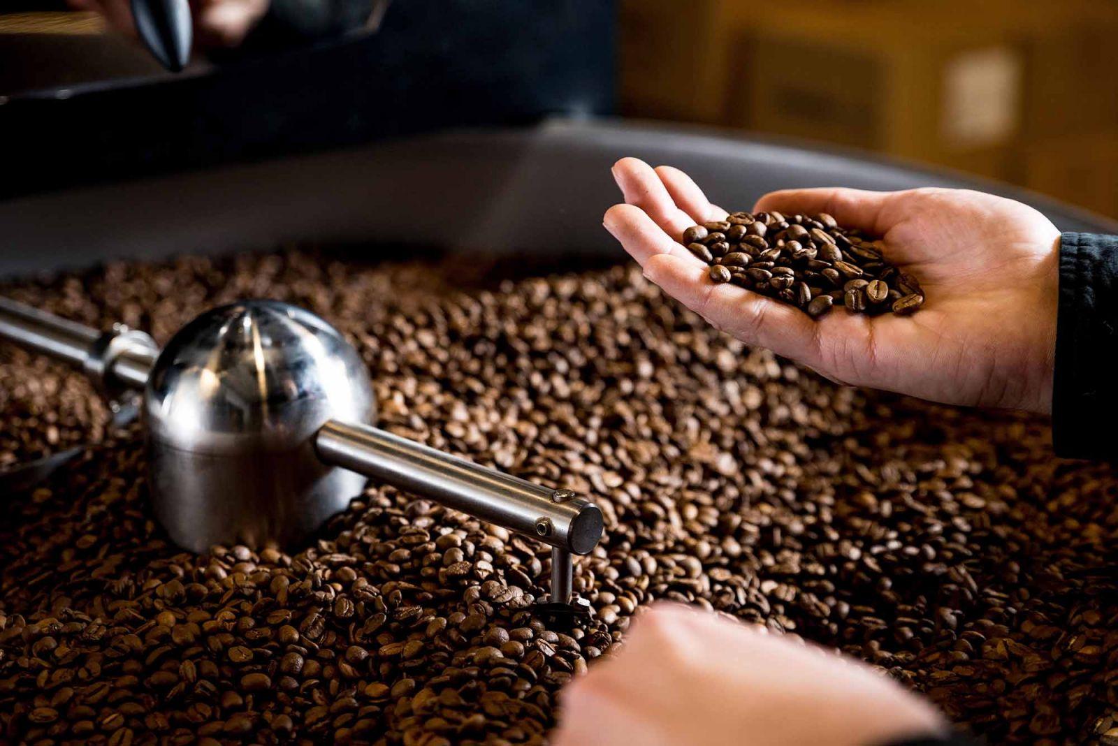 Thương hiệu gia công cà phê nào tốt nhất hiện nay